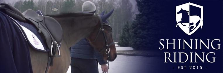 trening konia, samodyscyplina